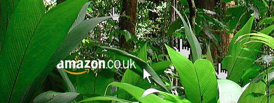 Amazon's Usability